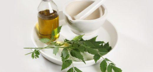 hemp oil benefits for skin