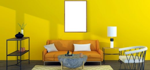 Paint Colour Ideas